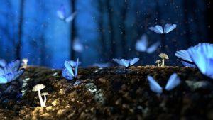 créer un monde imaginaire